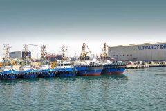 Handover celebration for thirteen Damen tugs